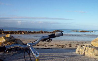 Dublino in bici? Sulle orme degli scrittori!