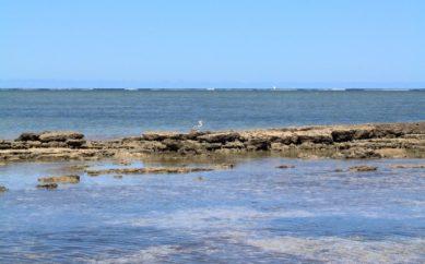 Viaggi di nozze Madagascar: sotto la croce del sud